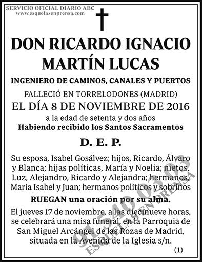 Ricardo Ignacio Martín Lucas